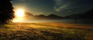 morning-sun-w-05